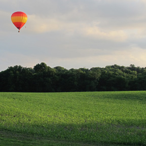 group of hot air balloon in franklin tennessee